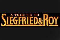 Des Magiciens de Légende Siegfried & Roy